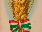 13db plakát + Reklámújság 1960-ból