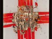 Égő aranyszövés, 2008