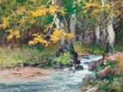 Csörgedező patak