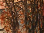 Dunaparti fák
