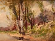 Folyóparti fák