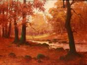 Erdőbelső patakkal