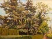 Napsütötte fák