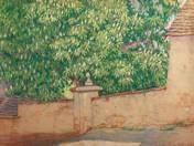 Gesztenyefa virágzás Füreden