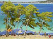 Baignade en Dalmatie (2011)