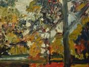Erdő őszi lombhullásban