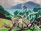 Balatoni tájkép