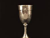 Pest Silver Chalice