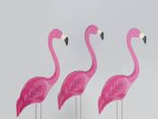 Kettő ... ja nem, három flamingó (2017)