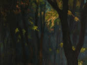 Árnyas erdő