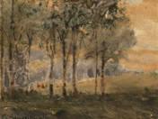 Erdőszéle