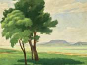 Balatonpart fákkal