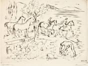 Lófürdetés