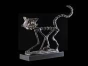 Bamba macska