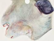 Csak egy állat 05. (2015)