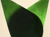 Zöld szárnyak