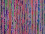Színes szöttes (2004)