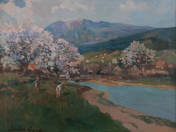 Virágzó fák vízparton